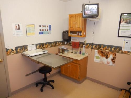 Veterinary-examination-room-two-at-Riverside-Hospital-05-1024x768